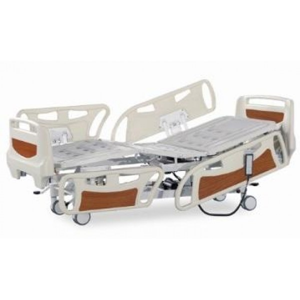 Five Function Electric Bed WE103C